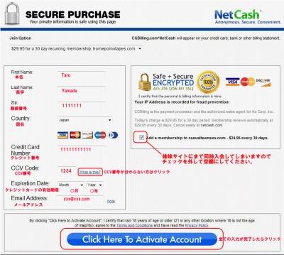 Net Cashのクレジット情報入力ページ