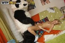 Panda Fuckのサンプル画像3
