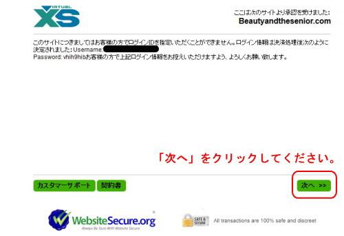 VXSBILLの注文確認ページ