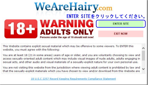 We Are Hairyの年齢認証ページ