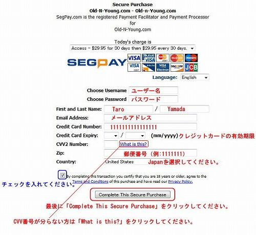 Segpayのクレジット入力ページになります。