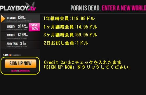 Playboy TVのメインページ上部