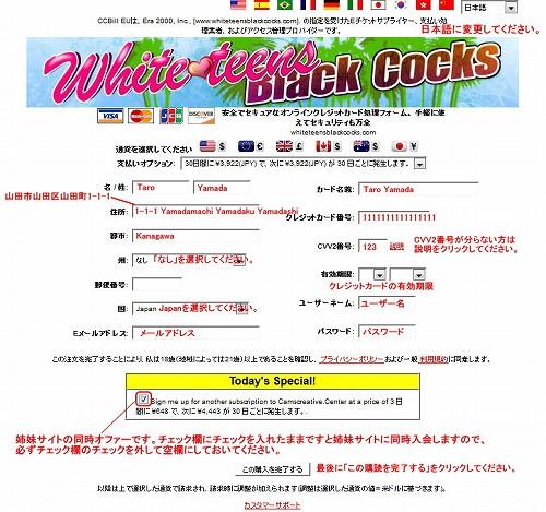 White Teens Black Cocksの支払い方法選択ページ