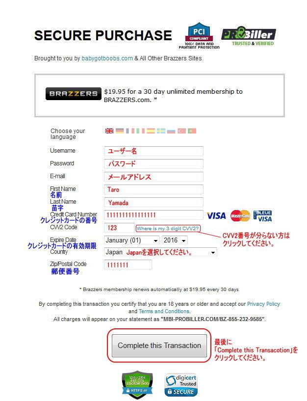 PSN Billingのクレジット情報入力ページ