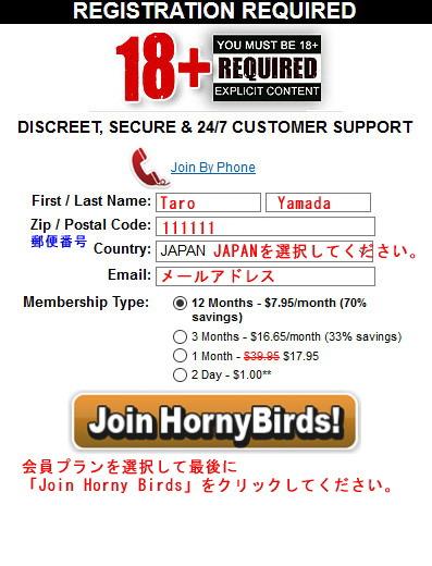 Horny Birdsの支払い方法選択ページ
