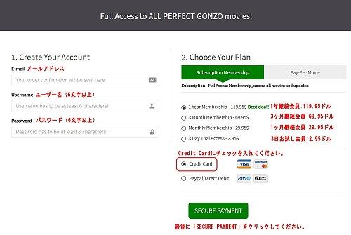Perfect Gonzoの会員プラン選択ページ
