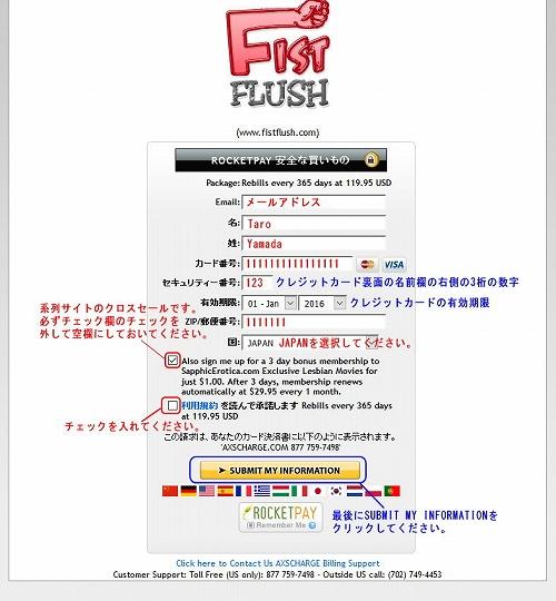 Fist Flushのクレジット情報入力ページ