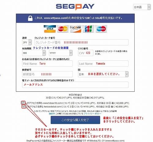 SegPayのクレジット情報入力ページ