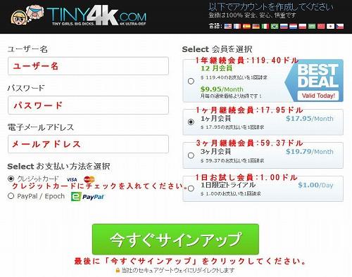 Tiny 4Kの会員プラン選択ページ