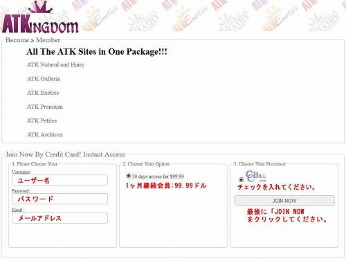 ATKingdom Networkの会員プラン選択ページ