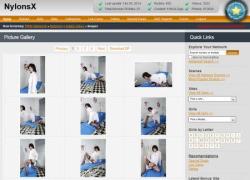 Nylons Xの画像作品ページのスクリーンショット