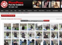 Euro Humpersの画像作品ページのスクリーンショット