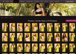 Tera Patrickの画像作品ページのスクリーンショット