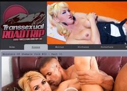 Transsexual Road Tripの動画作品ページのスクリーンショット