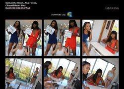 Zebra Girlsの画像作品ページのスクリーンショット