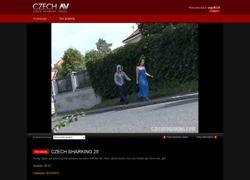 Czech Sharkingの画像作品ページのスクリーンショット