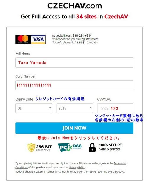 Net Look Billのクレジット情報入力ページ