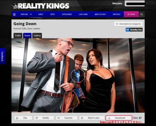 Reality Kingsの作品ページ