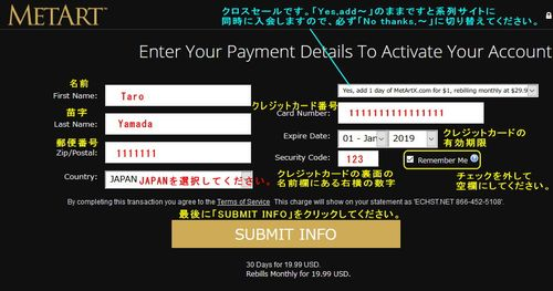 MetArtのクレジット情報入力ページ